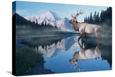 Reflections of Glacier-Gordon Semmens-Stretched Canvas Print