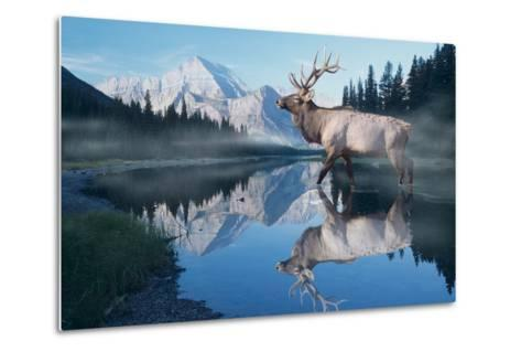 Reflections of Glacier-Gordon Semmens-Metal Print
