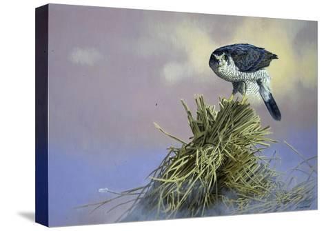 On Guard-Joh Naito-Stretched Canvas Print