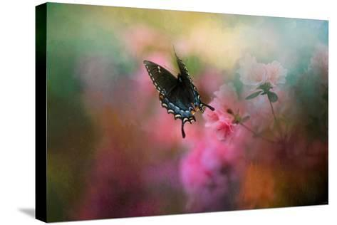 Garden Friend 1-Jai Johnson-Stretched Canvas Print