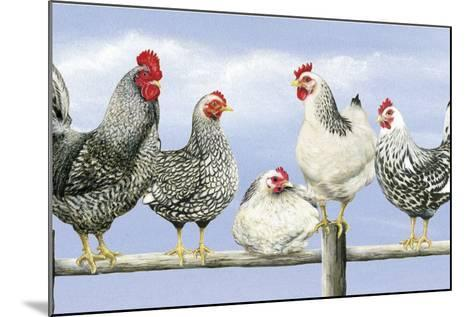 Black and White Hens 1-Janet Pidoux-Mounted Giclee Print
