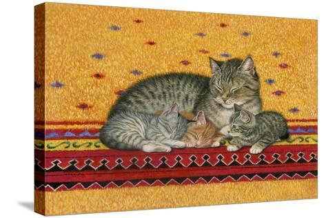 Mother and Kittens-Janet Pidoux-Stretched Canvas Print