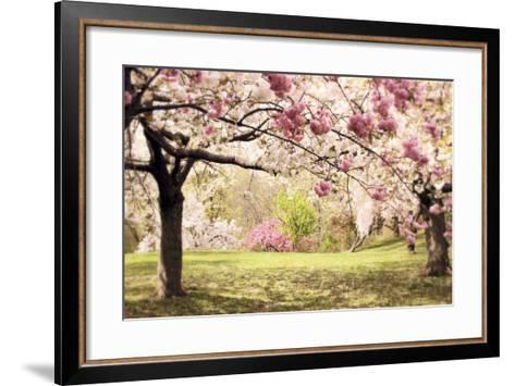 Cherry Hill Morning-Jessica Jenney-Framed Art Print