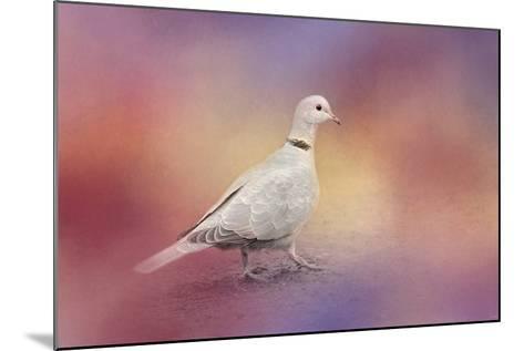 Spring Eurasian Collared Dove-Jai Johnson-Mounted Giclee Print
