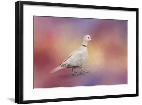Spring Eurasian Collared Dove-Jai Johnson-Framed Art Print
