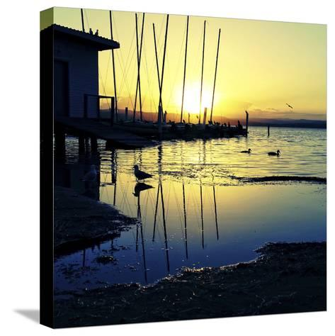 Sunset Conversations-Incredi-Stretched Canvas Print