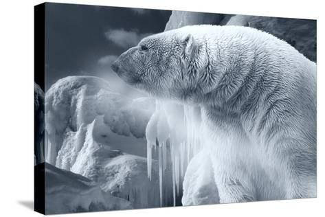 Arctic Frost-Gordon Semmens-Stretched Canvas Print