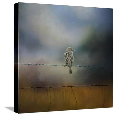 Fence Master-Jai Johnson-Stretched Canvas Print