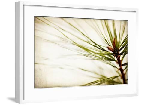 Pine Needles-Jessica Rogers-Framed Art Print