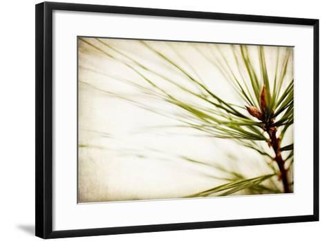 Pine Needles-Jessica Rogers-Framed Art Print