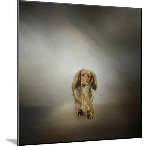 It's Showtime Baby Red Dachshund Dog-Jai Johnson-Mounted Giclee Print