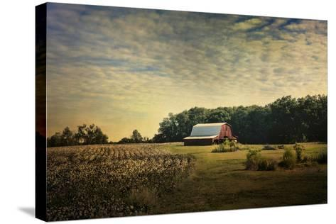 Red Barn at the Cotton Field-Jai Johnson-Stretched Canvas Print