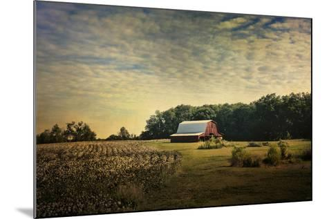 Red Barn at the Cotton Field-Jai Johnson-Mounted Giclee Print