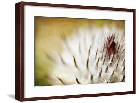 Thistle Bud-Jessica Rogers-Framed Art Print