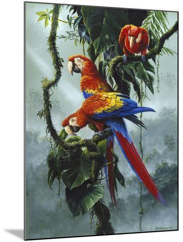 Red and Yellow Macaws-Harro Maass-Mounted Giclee Print