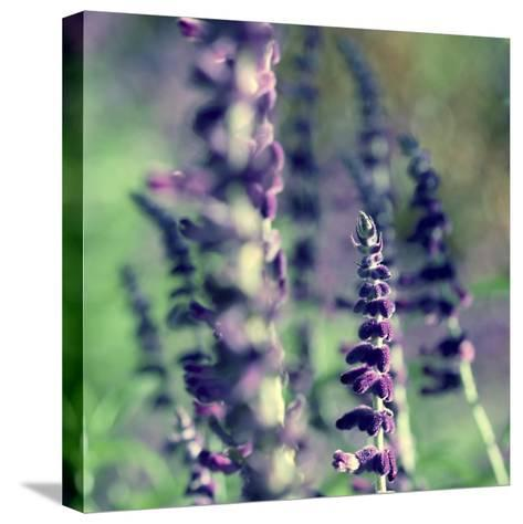 Believe in Me-Incredi-Stretched Canvas Print