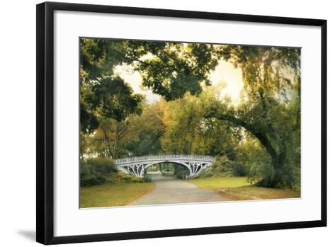 Gothic Bridge-Jessica Jenney-Framed Art Print