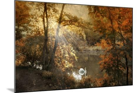 Autumn Afterglow-Jessica Jenney-Mounted Giclee Print