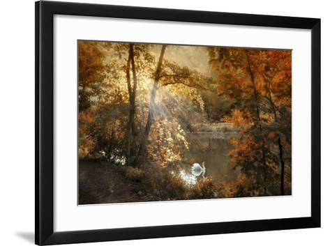 Autumn Afterglow-Jessica Jenney-Framed Art Print