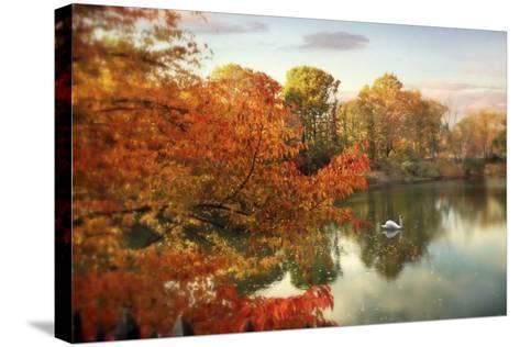 Autumn Splendor-Jessica Jenney-Stretched Canvas Print