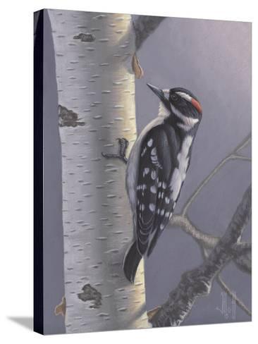 Downy-Jeffrey Hoff-Stretched Canvas Print