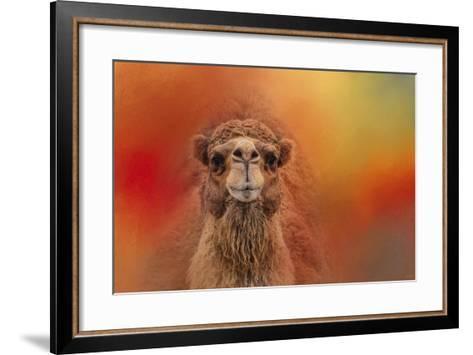 Dromedary Camel-Jai Johnson-Framed Art Print