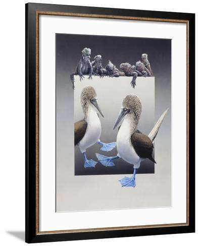 Bluefooted Boobies and Marine Iguanas-Harro Maass-Framed Art Print