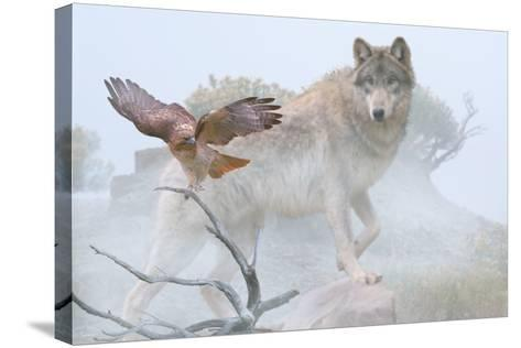 Silent Encounter-Gordon Semmens-Stretched Canvas Print
