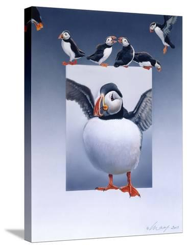 Puffins-Harro Maass-Stretched Canvas Print