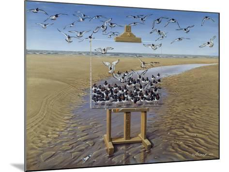 Oyster Catchers-Harro Maass-Mounted Giclee Print