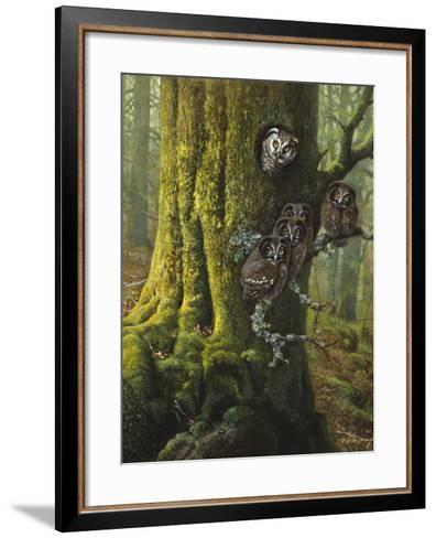 Tengmalms Owls-Harro Maass-Framed Art Print