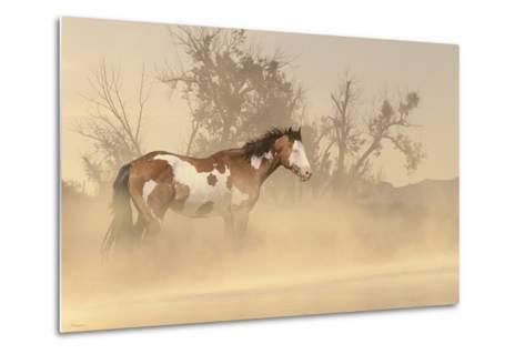 Misty River-Gordon Semmens-Metal Print