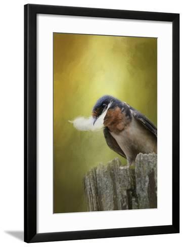 A Feather for Her Nest-Jai Johnson-Framed Art Print