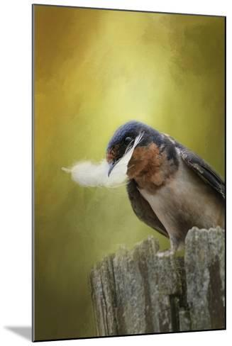A Feather for Her Nest-Jai Johnson-Mounted Giclee Print