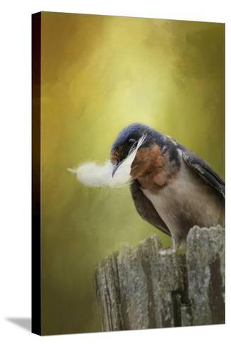 A Feather for Her Nest-Jai Johnson-Stretched Canvas Print