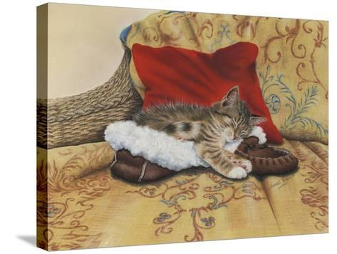 Comfy Slipper-Janet Pidoux-Stretched Canvas Print