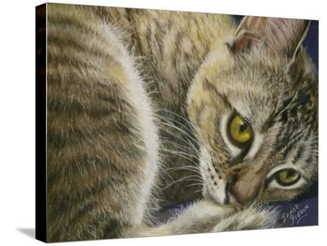 Bright Eyes-Janet Pidoux-Stretched Canvas Print