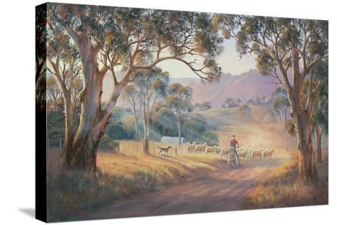 Rounding Up the Stragglers-John Bradley-Stretched Canvas Print