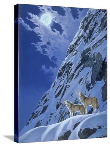 Faraway Call-Joh Naito-Stretched Canvas Print