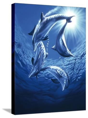 Dolphin Swing-Joh Naito-Stretched Canvas Print