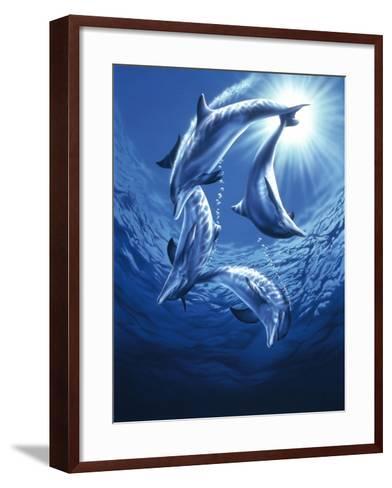 Dolphin Swing-Joh Naito-Framed Art Print