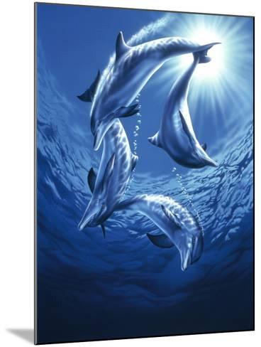 Dolphin Swing-Joh Naito-Mounted Giclee Print
