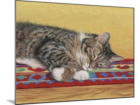 Sleepy Sam-Janet Pidoux-Mounted Giclee Print