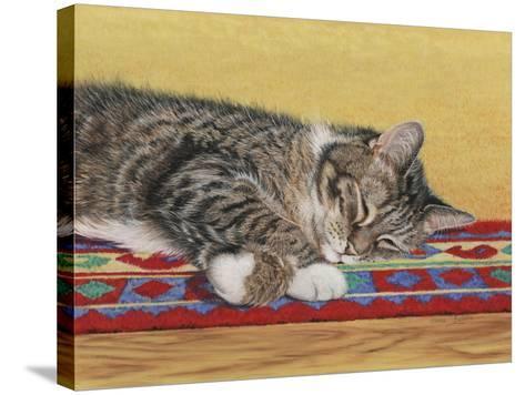 Sleepy Sam-Janet Pidoux-Stretched Canvas Print