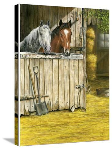 Friends-Janet Pidoux-Stretched Canvas Print