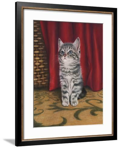 Grey Kitten and Red Curtain-Janet Pidoux-Framed Art Print