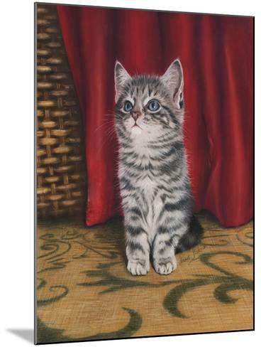 Grey Kitten and Red Curtain-Janet Pidoux-Mounted Giclee Print