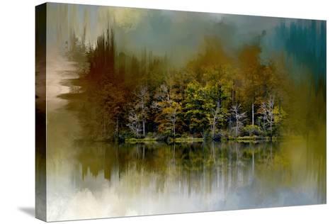 Abstract Summer Lake-Jai Johnson-Stretched Canvas Print