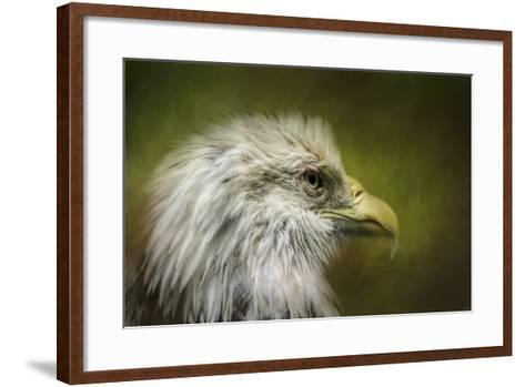 Bald Eagle in the Grove-Jai Johnson-Framed Art Print