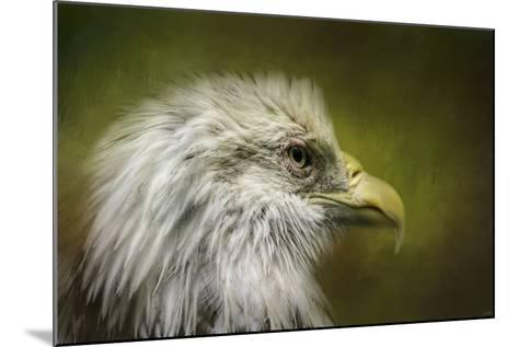 Bald Eagle in the Grove-Jai Johnson-Mounted Giclee Print